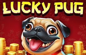 Lucky Pug