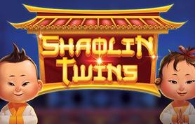Shaolin Twins