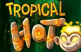 Tropical Hot